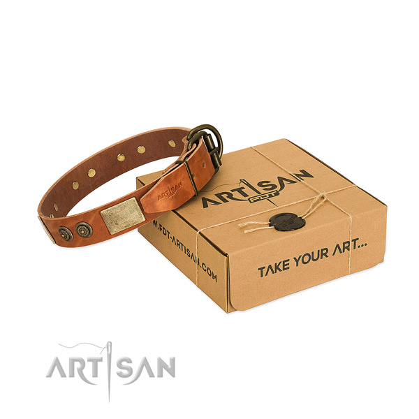 Rust-proof D-ring on full grain leather dog collar for stylish walking