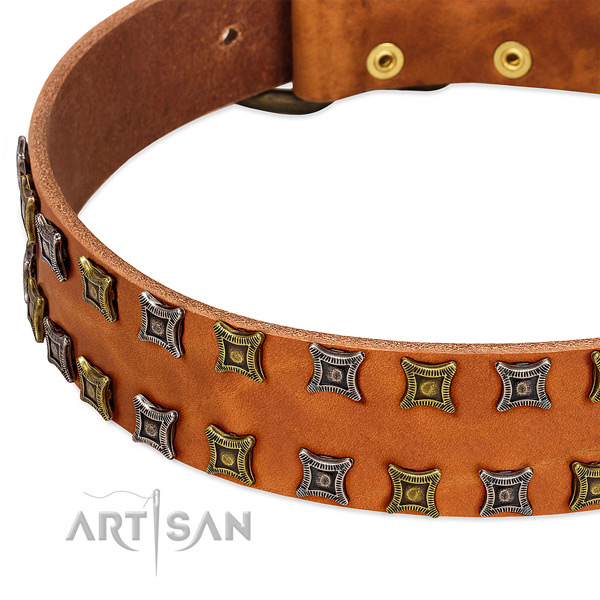 Top rate full grain genuine leather dog collar for your impressive doggie