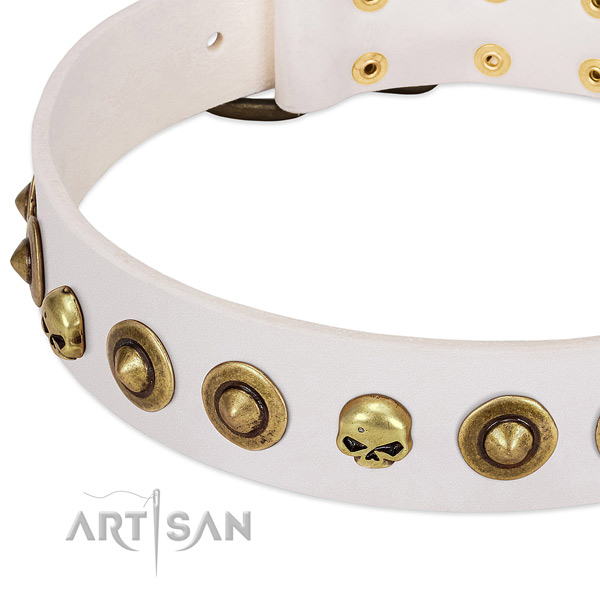 Designer adornments on full grain genuine leather collar for your doggie