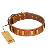 """Olive Slice"" FDT Artisan Tan Leather Rottweiler Collar with Engraved and Smooth Plates"