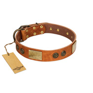 """Bronze Century"" FDT Artisan Tan Leather Rottweiler Collar with Plates and Brooches with Cool Ornament"
