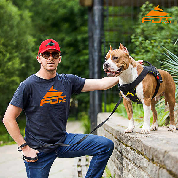 Men T-shirt of Durable Cotton with Orange Logo for Dog Trainers