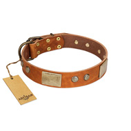 """Ancient Treasures"" FDT Artisan Tan Leather Rottweiler Collar with Antiqued Plates and Studs"