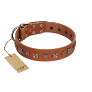 """Star Shine"" Exclusive FDT Artisan Tan Leather Rottweiler Collar with Silver-Like Adornments"