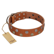 """Ancient Symbol"" Trendy FDT Artisan Tan Leather Rottweiler Collar with Silver- and Gold-Like Studs"