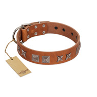 """Antique Figures"" FDT Artisan Tan Leather Rottweiler Collar with Silver-like Engraved Plates"