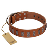 """Silver Century"" Fashionable FDT Artisan Tan Leather Rottweiler Collar with Silver-Like Plates"