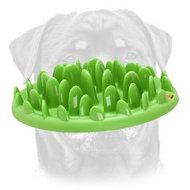 dog puzzle feeder