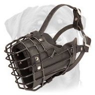 Anti-Freeze Metal Basket Dog Muzzle with Soft Padding